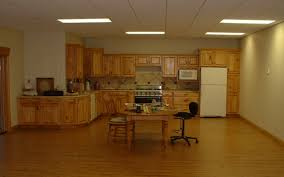 basements ceiling tile kitchen cabinets lighti ng pergo