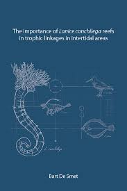 PhD defence Bart De Smet   Marine Biology Research Group The general discussion combines the results of this thesis and discusses the role of L  conchilega reefs regarding the community composition