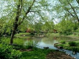 فصل الربيع Images?q=tbn:ANd9GcQD6YVfQWUO2_kBUitEcpAC5RcttBxydBKwzbInrL31nh-EvyHTqQ