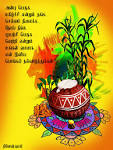 Happy PONGAL by design2din on DeviantArt