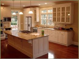 Kitchen Cabinet  Glass Kitchen Cabinet Doors Inquisitive - Kitchen cabinet with glass doors