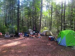 sinharaja rain forest essay in sinhala