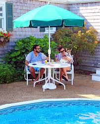 the pampered pooch 10 ways to spoil your dog on cape cod cape