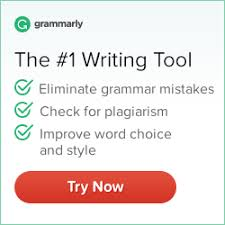 Reinventing School Proofread my essay   Can You Write My Term Paper for an Affordable
