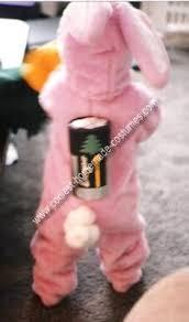 Bunny Halloween Costumes Kids 25 Energizer Bunny Ideas Energizer Bunny