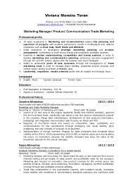 Online Marketing Manager Resume by Amazing Product Line Manager Resume 69 For Your Online Resume