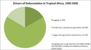 Key articles about Congo deforestation