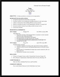 Resume Profile Section Examples by Resume Profile Examples For Customer Service Free Resume Example