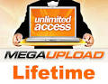 Megaupload Files And Personal Data To Be Deleted By The FBI