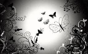 Wallpaper Black And White by And White Butterfly Wallpaper Hd