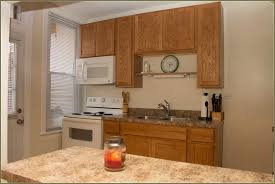 Tampa Kitchen Cabinets New Doors For Existing Kitchen Cabinets Kitchen Cabinets Should