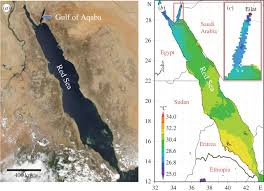 Map Of The Red Sea Temperature Resistance Of S Pistillata Open Science