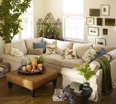 Astonish Decorating Small Living Room Ideas  Front Room Ideas - Decorate my living room