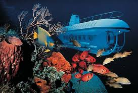 Photograph An Atlantis  a free swimming  self propelled submersible  carries