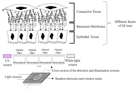 sensors free full text optical microsystem for analysis of