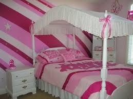 Pink Room Ideas by Enchanting 20 Pink Canopy Design Design Ideas Of Best 20 Girls