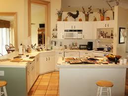 Kosher Kitchen Design 100 Kosher Kitchen Design Kitchen Miami Kitchen Design