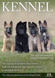 belgian shepherd uk breeders kennel gazette january 2017 by the kennel club issuu