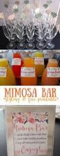 best 25 mimosa bar ideas on pinterest mimosas mimosas recipe