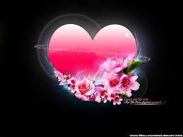 வால்பேப்பர்கள் ( flowers wallpapers ) Images?q=tbn:ANd9GcQJleg6FX8IJ2blWKvKMMpgF8pZAuF-A1fvy4E5-QTQ8L-A7hdt4Q