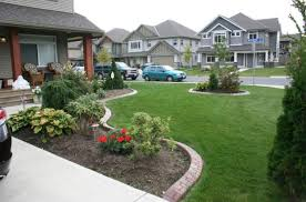 Front Garden Design Ideas Low Maintenance Front Yard Design For Amys Office Landscape Low Maintenance