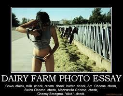 Cheese Images?q=tbn:ANd9GcQK5ZyHlwGf9X6kun2CKSULghqXxUTDwPSg3xtA9MCsNqGaHfr3