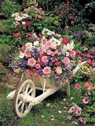 best 25 wheelbarrow garden ideas on pinterest wheel barrow