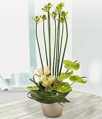 Flowers Winchester - joannes florist winchester blog and news same day flowers 8am to 6pm