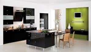 contemporary modern kitchen colors 2013 light glass cabinets doors