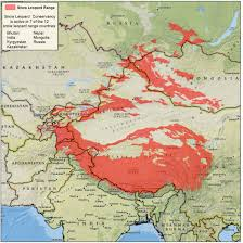 Pakistan On The Map Range Map Snow Leopard Conservancysnow Leopard Conservancy