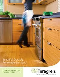 panel veneer brochure teragren bamboo flooring panels veneer panel veneer brochure 1 6 pages