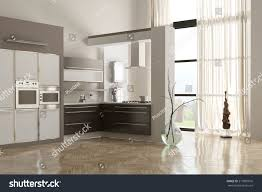 Built In Kitchen Cabinets Built In Appliances Flawless Kitchen Inspiration Built In