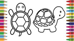 how to draw tortoise step by step drawing tortoise coloring