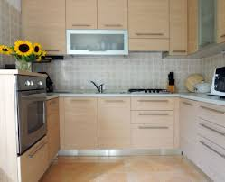 Replacing Kitchen Cabinets Doors Best Replacement Kitchen Cabinet Doors Shaker Style Tags