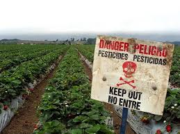pesticides and fertilizers