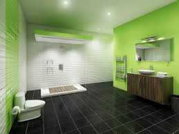 color bathroom ideas design small bathroom colour ideas colors color styleup