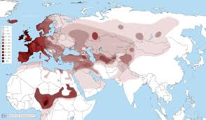 Map Of Europe And Africa by Distribution Maps Of Y Chromosomal Haplogroups In Europe The