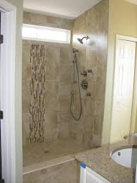 Bathroom Shower Remodel Ideas by Download Small Bathroom Showers Gen4congress Com Bathroom Decor