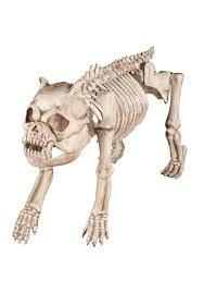 morphsuit spirit halloween bones the hungry hound skeleton dog