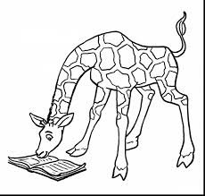 incredible giraffe coloring pages color with giraffe coloring