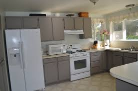 kitchen what makes some kitchen cabinets the best wayne home decor