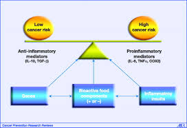 bioactive food components inflammatory targets and cancer