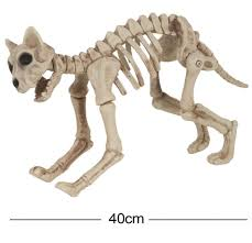 halloween skeletons decorations zombie cat halloween skeleton decoration by bristol novelties