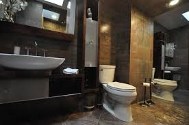 Small Bathroom Remodeling Ideas Budget by Decoration Ideas Simple And Neat Frameless Glass Shower Door For