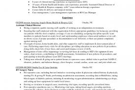 Usajobs Example Resume by Resume Design Cover Letter To Irs Audit Response Auditor Cover