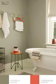 Bathroom Paint Colour Ideas Colors 36 Best Dulux Paint Images On Pinterest Dulux Paint Colour