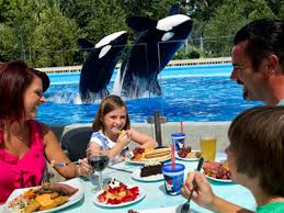 seaworld black friday deals the top 4 ways to save money on food at seaworld orlando
