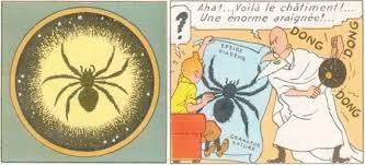 Des araignées géantes sèment la panique en Inde Images?q=tbn:ANd9GcQPlBIYYW-BLmEHKs7xQ8odm6Jj6yZz070mK9WcWWlQTOFkkq4A