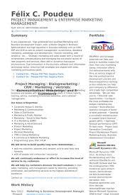 Sample Resume For Senior Manager by Business Development Executive Resume Samples Visualcv Resume