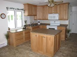 Formica Laminate Kitchen Cabinets Inspirations Outstanding Kitchen Interior With Best Lowes Kitchen